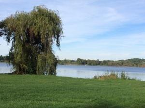 Springfield lake