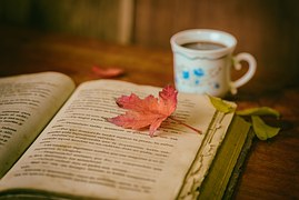 reading-leaves-cup