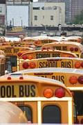 school-bus free