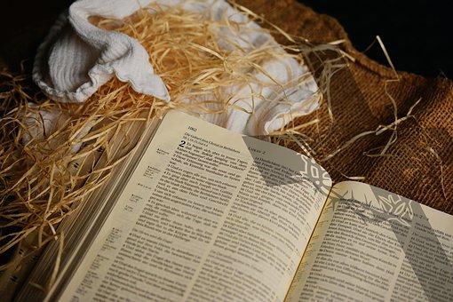 bible-free