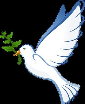 dove-peace-free