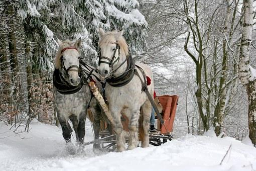 sleigh-ride-w-horses-free