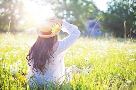 sunshine free