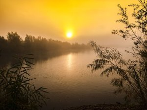 sunrise free