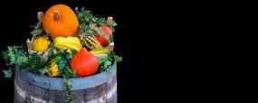barrel n gourds free