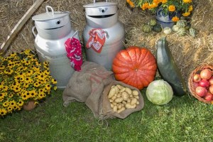 thanksgiving outdoor decor free